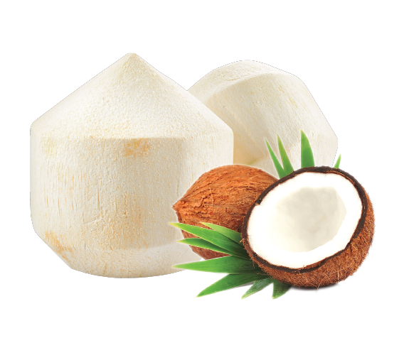 Natural Products Exporters